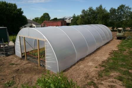 Image of large polytunnel