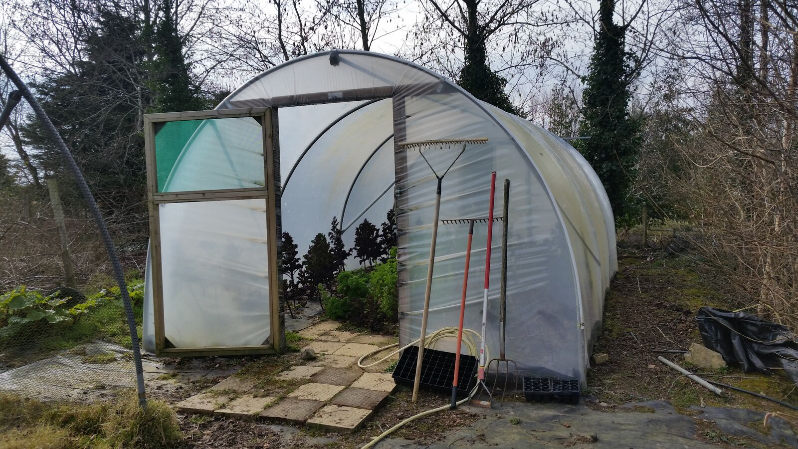 small hobby polytunnel