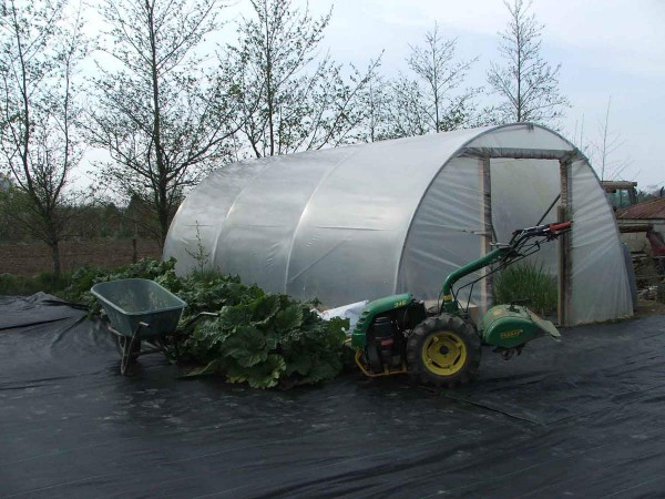 Large Hobby Polytunnel