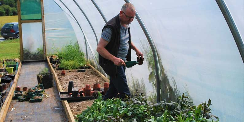Maintaining Your Polytunnel