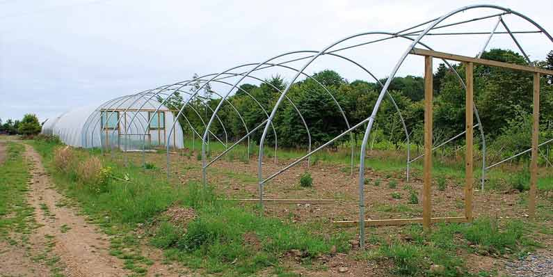 Polytunnel In A Wind Bound Area