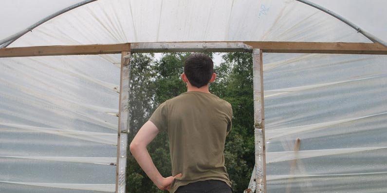 What Size of Polytunnel Do I Need?