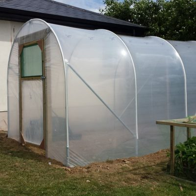 Small Allotment Polytunnel